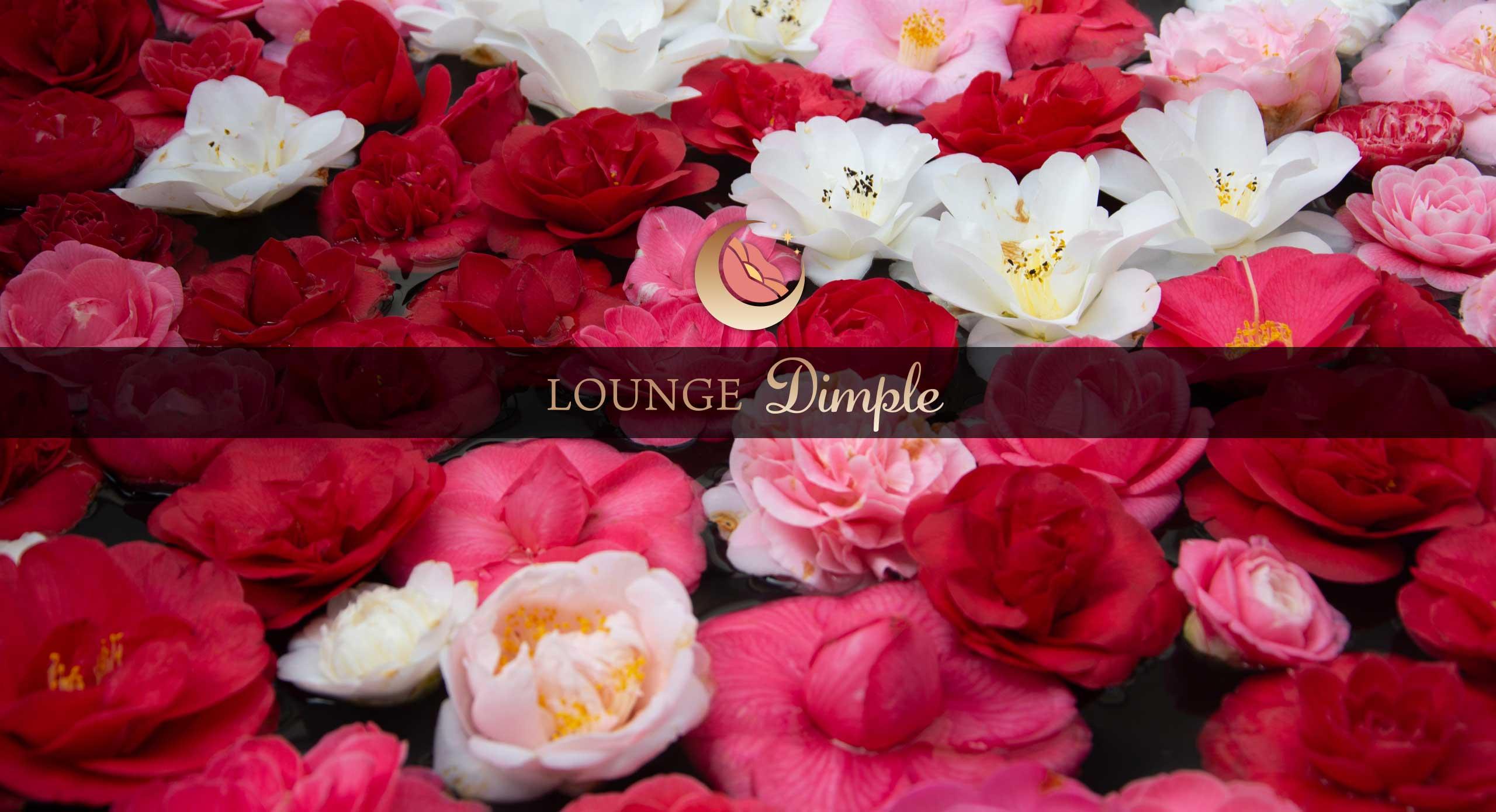 旭川 ラウンジディンプル(Lounge Dimple)3・6(さんろく)街で飲み屋をお探しなら